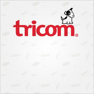 Instalación postes telecomunicaciones – Tricom